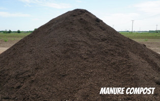 Manure Compost